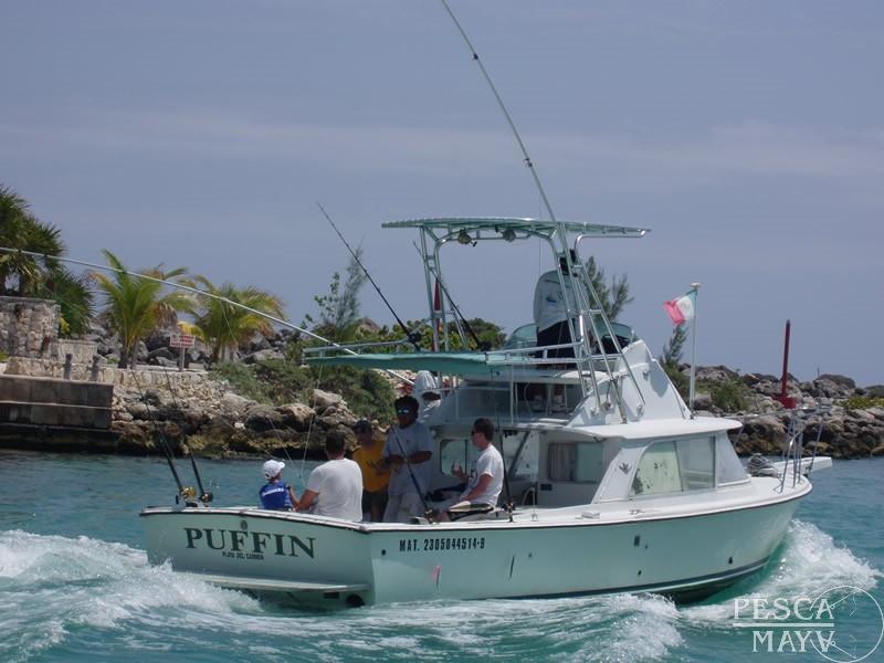 Riviera maya puerto aventuras playa del carmen one day for Playa del carmen fishing charters