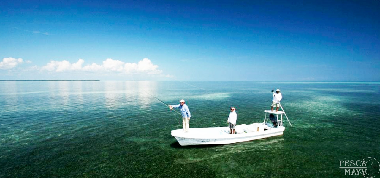 Ascension bay fishing pesca maya fishing lodge ascension for Fly fishing bay area